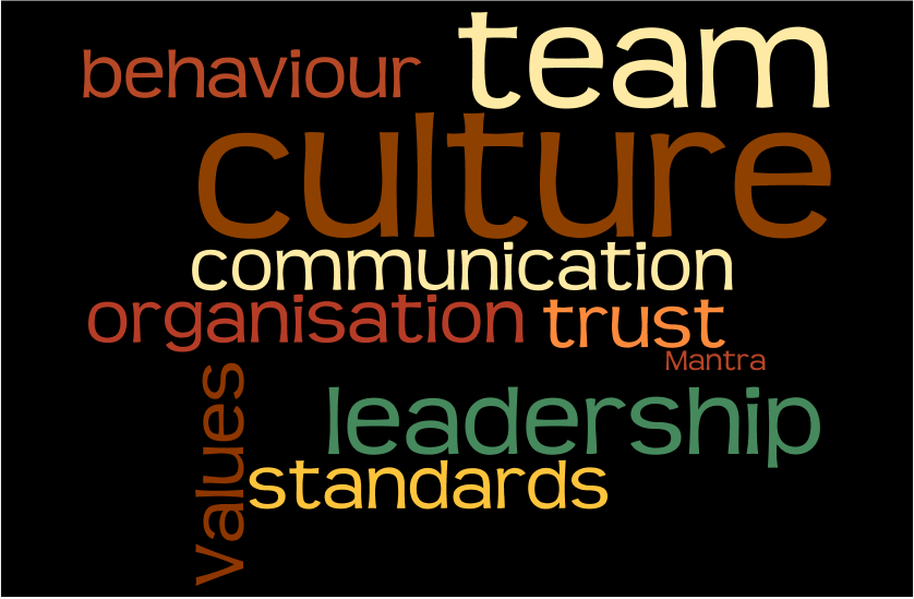 Culture Wordle High performance team sport elite performance